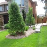 Progreen Landscaping